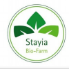Stayia Farm